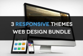 3-responsive-themes-web-design-bundle-preview