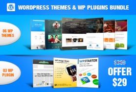 06 Wordpress themes & 03 WP Plugins