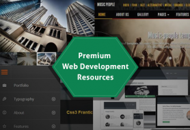 premium web development resources