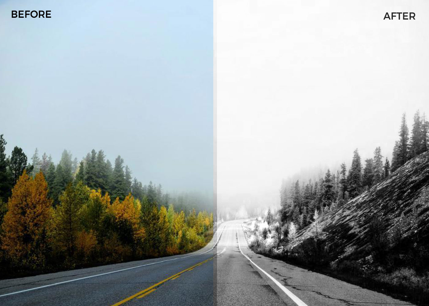 Black and white Photoshop actions -01